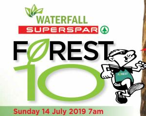 2019 Forest-10